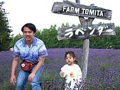 20060728北海道:063薰衣草山丘.jpg