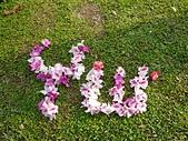 101年賞花:1010315台大杜鵑花節 (17)