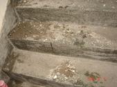 水管漏水業績實況:DSC09384.JPG