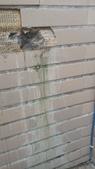 水管漏水業績實況:IMG_20170610_103417.jpg