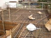 新建水電工程:DSCN2841.jpg