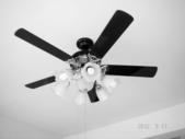 吊扇安裝工程:DSC09596.jpg