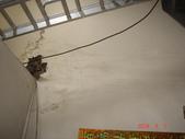 水管漏水業績實況:DSC09378.JPG