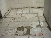 地磚重建:DSC09408.JPG