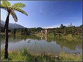 苗栗向天湖:nEO_IMG_IMG_2911.jpg