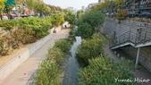 2017首爾遊:清溪川