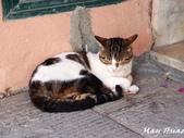Italy:P6113583.jpg