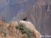 Peru:PB293447.jpg