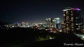 2017首爾遊:南山公園