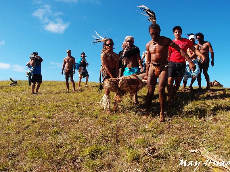 Easter Island (Rapa Nui):P2136409.jpg