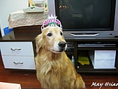 2011/01/02 Nini Birthday Party:IMG_6716.jpg