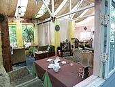 2006-11-09陽明山寫真集:20061109 010