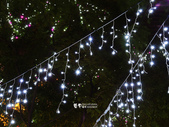 新北歡樂耶誕城:2014-12-13 新北歡樂耶誕城 (8).jpg