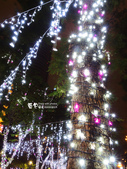 新北歡樂耶誕城:2014-12-13 新北歡樂耶誕城 (11).jpg
