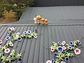 2013-12-16新港板陶窯:20131216228.jpg