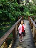 2012-07-12紫南宮、溪頭:IMG_2940.JPG