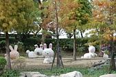 2013-12-16新港板陶窯:20131216123.jpg