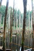 2014-07-21忘憂森林:2014072000146.jpg