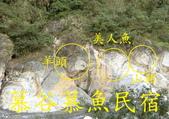龍澗峽谷:猩猩.jpg