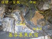 龍澗峽谷:猩猩家庭.jpg