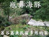 花蓮最夯~慕谷慕魚清水溪(有九寨溝的雅號):鯨魚.jpg
