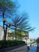 捷運線形公園上的風景:DSCN7427