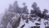 0116合歡山玩雪趣:DSC02892.JPG