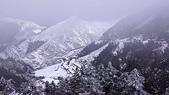0116合歡山玩雪趣:DSC02900.JPG
