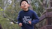 2011社頭登山步道:DSC03086.JPG