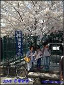 2014  花現日本 @ 京都嵐山:IMG_5714.jpg