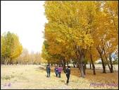 2014 世界屋脊 : 西藏 @ 山南:PA184238.jpg