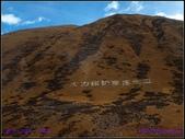 2014 世界屋脊 : 西藏 @ 塞外江南 ~ 林芝:PA153996.jpg