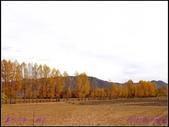 2014 世界屋脊 : 西藏 @ 塞外江南 ~ 林芝:PA153960.jpg