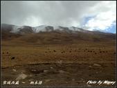 2014 世界屋脊 : 西藏 @ 納木措:IMG_2118.jpg