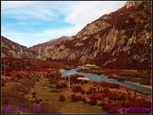 2014 世界屋脊 : 西藏 @ 塞外江南 ~ 林芝:PA153976.jpg