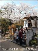 2014  花現日本 @ 京都嵐山:P4033059.jpg