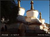 2014  世界屋脊:西藏 @ 札什倫布寺:PA224633.jpg