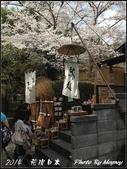 2014  花現日本 @ 京都嵐山:IMG_5726.jpg