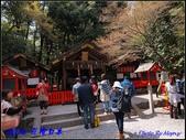 2014  花現日本 @ 京都嵐山:P4033068.jpg