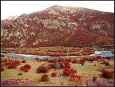2014 世界屋脊 : 西藏 @ 塞外江南 ~ 林芝:PA153978.jpg
