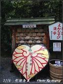 2014  花現日本 @ 京都嵐山:IMG_5743.jpg