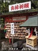 2014  花現日本 @ 京都嵐山:IMG_5742.jpg