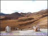 2014 世界屋脊 : 西藏 @ 塞外江南 ~ 林芝:PA153987.jpg