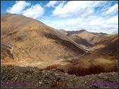 2014 世界屋脊 : 西藏 @ 塞外江南 ~ 林芝:PA153992.jpg