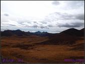 2014 世界屋脊 : 西藏 @ 塞外江南 ~ 林芝:PA153990.jpg