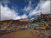 2014 世界屋脊 : 西藏 @ 塞外江南 ~ 林芝:PA153991.jpg