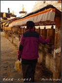 2014  世界屋脊:西藏 @ 札什倫布寺:PA224636.jpg