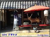 2014 花現日本 @ 奈良公園:IMG_5469.jpg