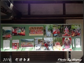 2014  花現日本 @ 京都嵐山:IMG_5727.jpg
