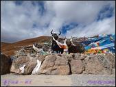 2014 世界屋脊 : 西藏 @ 塞外江南 ~ 林芝:PA153985.jpg